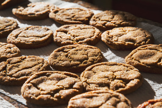Homemade Molasses Sugar Cookies freshly baked; Close up of cookies with sparkling sugar coating