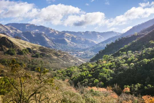 Morning view of a valley in Sunol Regional Wilderness, San Francisco bay area, California