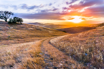 Photo sur Aluminium Amérique du Sud Walking path on the grassy hills of south San Francisco bay area at sunset, San Jose, California