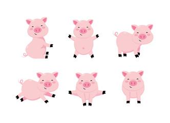 set cute pig wild animal character