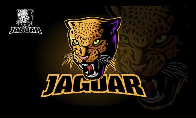 Vector illustration of a big cat jaguar or leopard head. Jaguar head in color. - Vector  Wall mural