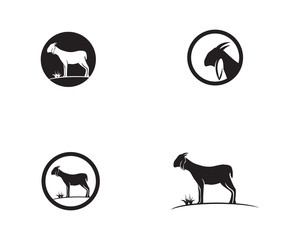 Goat head Logo Template vector