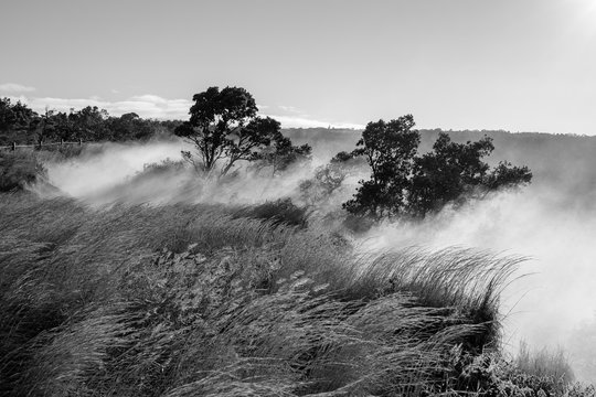 Black and white photos of steam rising from volcanic steam vents on the Big Island