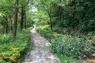 新美南吉記念館童話の森