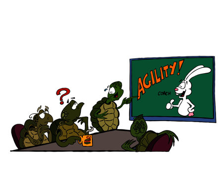 Illustration of a team of turtles considering an agile approach