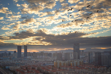 Urban real estate concept: city on twilight color sky and clouds cityscape background