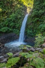 Rain Forest Blue Waterfall in Costa Rica
