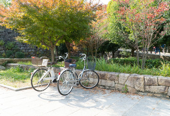 Bicycle riding is a favorite activity for visitors to see beautiful scenery around Osaka castle park in autumn when leaves change the colors.