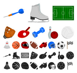 Different kinds of sports cartoon, black icons in set collection for design. Sport equipment vector symbol stock web illustration.
