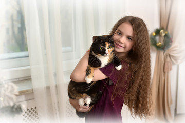 brunette girl with a cat in her arms in christmas