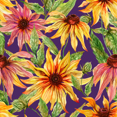 Beautiful echinacea flowers (coneflower) with leaves on purple background. Seamless floral pattern.  Watercolor painting. Hand painted botanical illustration.