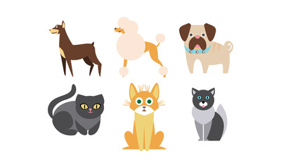 Cats and dogs of different breeds set, cute domestic animals, best friends vector Illustration