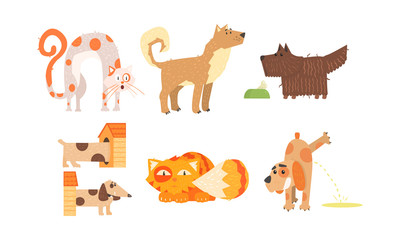 Funny cats and dogs of different breeds, cute animals in different situations, best friends vector Illustration