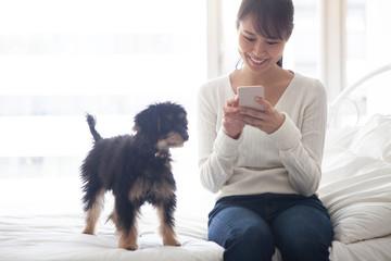 女性の触っているスマホを見つめるペットの犬