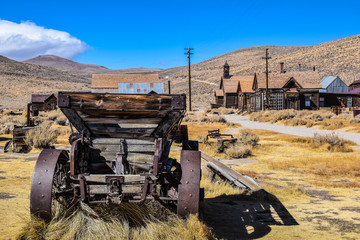 The ghost town of Bodie, an abandoned gold mining town in California, is a landmark visited by people from all of the world. Wall mural