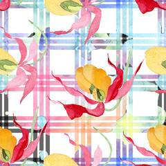 Cypredium calceolus. Floral botanical flower. Watercolor background illustration set. Seamless background pattern.