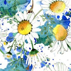 Chamomile floral botanical flower. Watercolor background illustration set. Seamless background pattern.