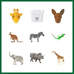 9 zoo icon. Vector illustration zoo set. kangaroo and rhino icons for zoo works