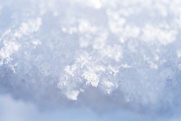 新雪の結晶