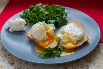 close-up, on a blue plate are two toasts on them poached eggs, liquid yolk, comes out of an egg, the dish is decorated with fresh green parsley leaves and a ball of moskarpone cheese