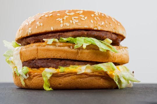 Tasty double cheeseburger