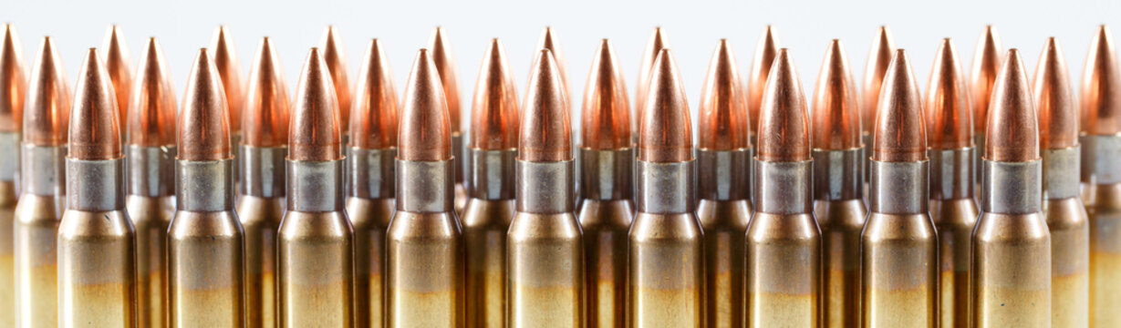 Hunting cartridges of caliber. 308 Win
