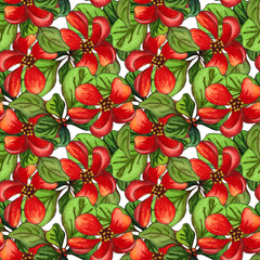 Watercolor seamless pattern of Japanese quince (chaenomeles) in bloom, hand drawn floral illustration.