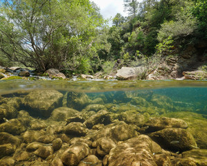 Photo sur Toile Riviere Wild river with rocks and fish underwater, split view half above and below water surface, La Muga, Girona, Alt Emporda, Catalonia, Spain