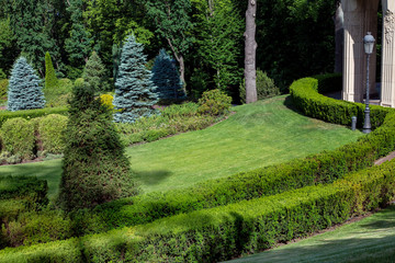 landscape design with boxwood hedges and glade with a lawn on the background of deciduous and pine trees, on the right in the frame there is a retro lamppost with a lantern and columns of a building.