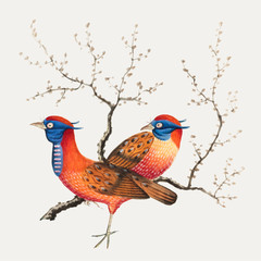 Chinese painting featuring two pheasant-like birds with flowering plants.