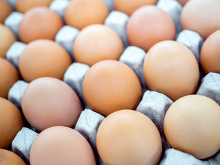 Close-up view of raw chicken eggs in egg box.
