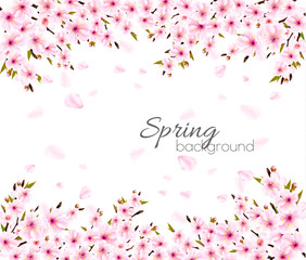 Wall Mural - Spring nature background with Sakura japan cherry branch. Vector