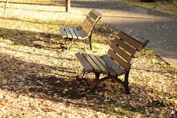 冬の公園のベンチ