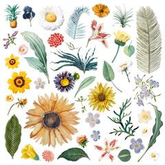 Floral background pattern illustration
