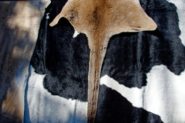Animal hides at Gosford City Farmers Market Day April, 2017