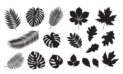 Big set of summer leaves. Isolated black silhouettes of leaves on a white background. Sketch, design elements. Vector.