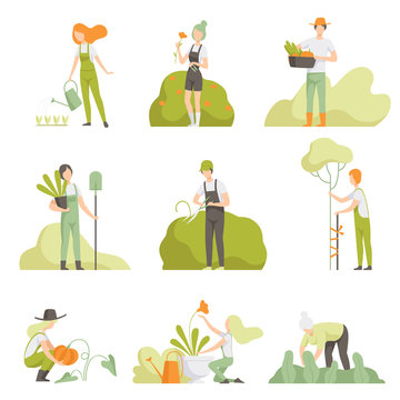 People caring for plants in the garden set, men and women, watering plants, growing agricultural products vector Illustration