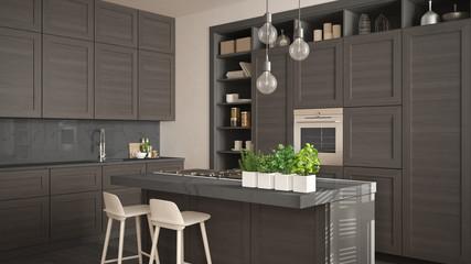 Modern gray kitchen with dark wooden details in contemporary luxury apartment with parquet floor, vintage retro interior design, architecture open space living room concept idea