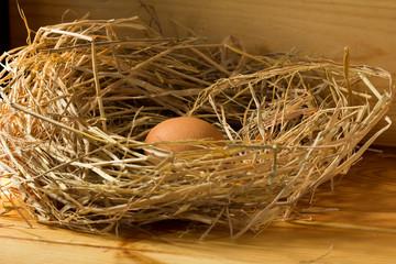 chicken egg in straw on wooden background