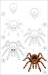 Educational page for kids shows how to learn step by step to draw a cute spider. Back to school. Developing children skills for drawing and coloring. Vector cartoon image.