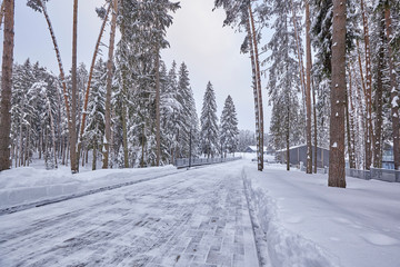Wooden Finnish house in winter forest covered with snow