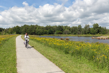 Biking woman in Dutch national park with forest and wetlands