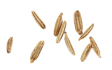 Wall Murals Spices Cumin, macro caraway seeds isolated on white background, top view