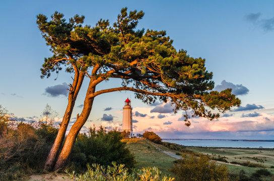 Hiddensee Leuchtturm Dornbusch am Abend