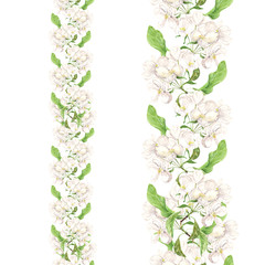 Apple pink flowers. Seamless floral border. Botanical watercolour painted edging.