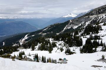 Whistler Mountain III