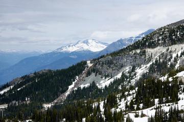 Whistler Mountain IV