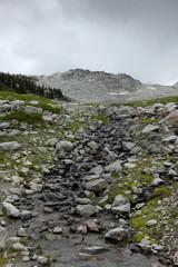 Bergwanderung in Whistler II