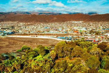 Vivero Antofagasta