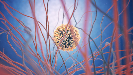 3d illustration of a white blood cell (also called leukocytes or leucocytes)